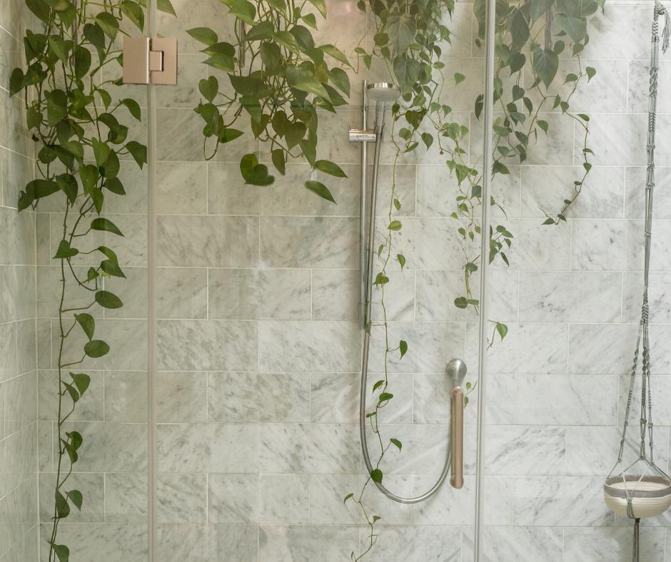 Bathroom Greenery